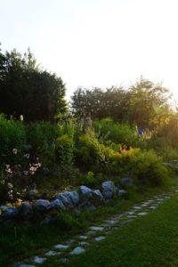 Gartengestaltung und Tipps für den Garten, Glück aus Grünem, Ulrike Plaichinger, Räuchern, Haunsberg, Kräuterwanderungen, Gartengestaltung