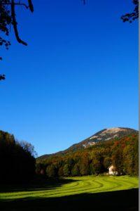 Magische Orte am Haunsberg, Glück aus Grünem, Ulrike Plaichinger, Räuchern, Haunsberg, Kräuterwanderungen, Gartengestaltung