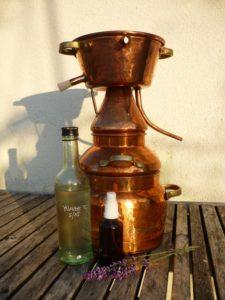 Destillieren, Glück aus Grünem, Ulrike Plaichinger, Räuchern, Haunsberg, Kräuterwanderungen, Gartengestaltung